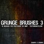 Grunge Brushes 3 by: TextureMate