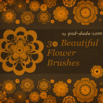 Flower Brushes by: psd-Dude