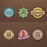 Vintage Retro Badges PSD