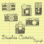 Vintage Camera Brushes
