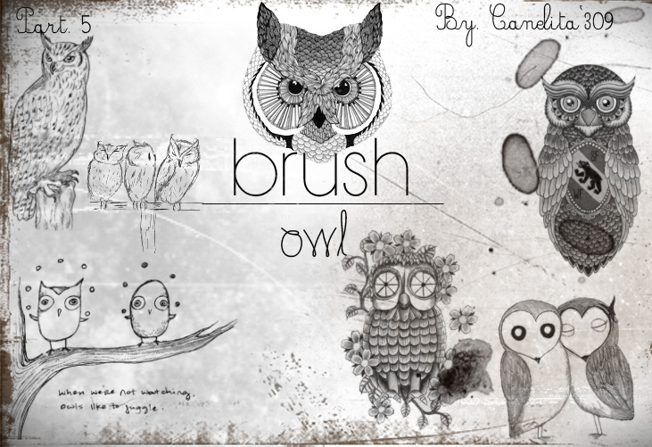 previa_owl_part_5_by_canelita309_by_sriitadewatt-d616i0n