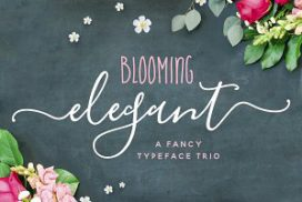 blooming-elegant-brush-font-272x182