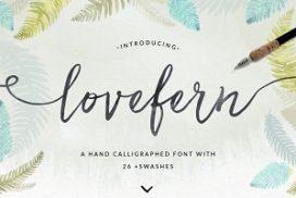 lovefern-font-272x182